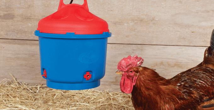 Top 12 Best Chicken Waterer: Reviews in 2021 (Updated!)
