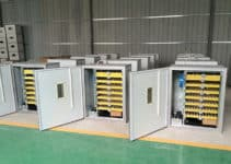 best-cabinet-incubator