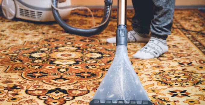 clean-an-area-rug-with-a-steam-cleaner